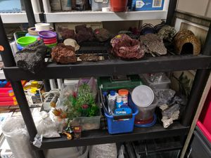 Reptile/tarantula/fish supplies, tanks for Sale in Scottsdale, AZ
