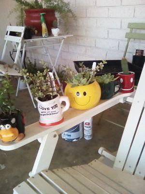 Plant Expression for Sale in Visalia, CA