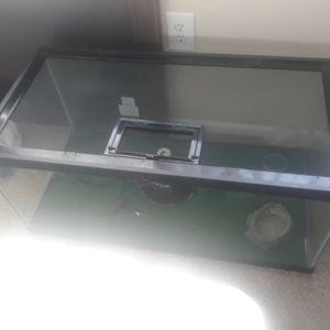 40 Gallon Reptile Tank for Sale in Port Richey, FL