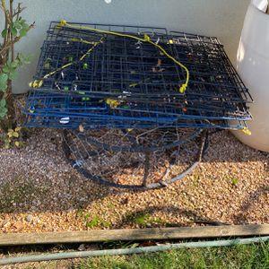 Crab Traps for Sale in Sacramento, CA
