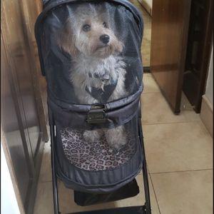 Let Stroller Pet Gear for Sale in Alhambra, CA