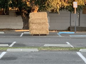 FREE HAYBALES for Sale in Orange, CA