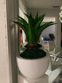 White Vase And Plant for Sale in Miami,  FL