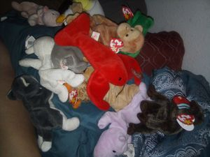 Beanie baby collection for Sale in San Diego, CA