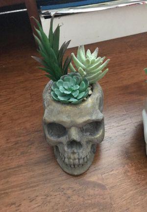 Two skull fake plants for Sale in Santa Ana, CA