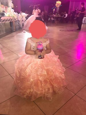 Mini Quinceanera Dress for Sale in Houston, TX