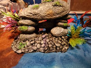 Fish tank decorations for Sale in Pasadena, TX