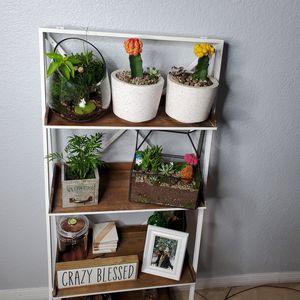 Plants and shelf. for Sale in Miami, FL