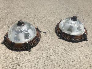 Light for Sale in Belleville, MI