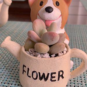 Cute Corgi 🐶 flower ceramic pot with succulent 🌸 for Sale in National City, CA