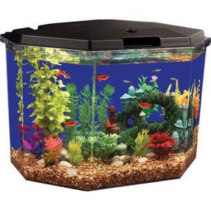 6.5 Gallon Fish Tank Aquarium Fishtank Semi Hex And Filter for Sale in Naperville, IL