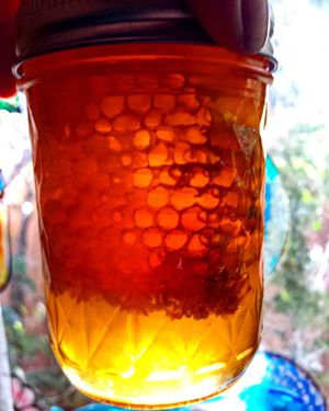 Chunk honey for Sale in Sacramento, CA