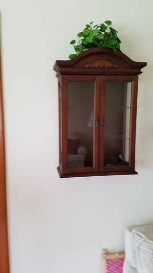 Small Wall Curio Cabinet for Sale in Palos Heights, IL