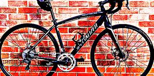 FREE bike sport for Sale in Sebeka, MN