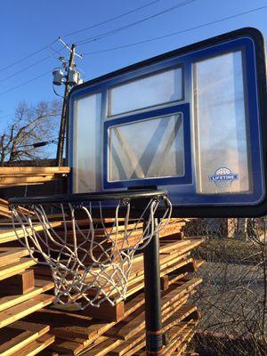 LifeTime Basketball Hoop for Sale in Rockville, MD
