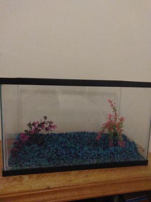 10 gallon fish tank for Sale in Manassas, VA