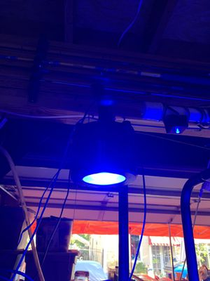 Kessil A360we for Sale in Brentwood, CA
