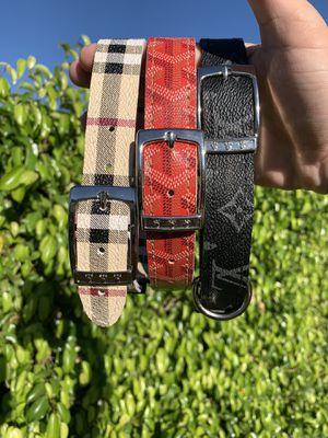 Custom Dog Collar for Sale in Palm Springs, CA