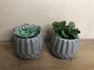 Artificial succulents home decor grey pots for Sale in Chula Vista, CA