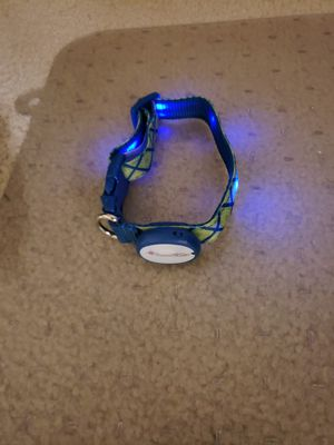 Good 2 go light up dog collar for Sale in Arlington, VA
