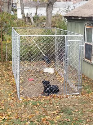 Large breed dog kennel for Sale in New Haven, CT