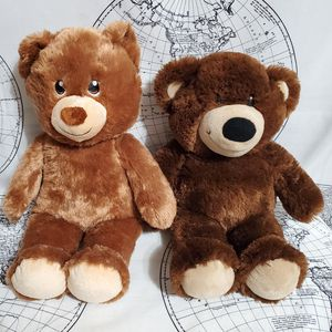 Build a Bear Workshop Teddy Set (Can Ship) for Sale in Marion, NC