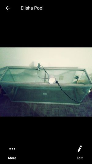 Huge fish tank a reptile etc for Sale in Lincoln, NE