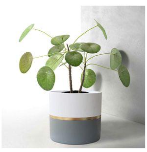 Modern ceramic flower pot for Sale in San Diego, CA