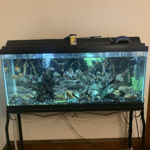 Fish Tank for Sale in Worcester, MA