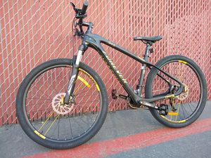 Carbon Fiber Forever Mountain Bike for Sale in Poway, CA