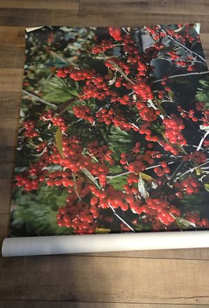 Canvas Floral Posters for Sale in Tacoma, WA