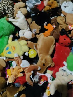 Ty Beanie Babies Lot Pvc And Insert Cards for Sale in Pleasant Hill, IA