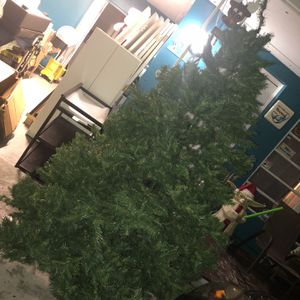 Christmas Tree for Sale in Fort Lauderdale, FL