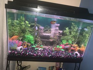 30 gallon fish tank with stand and lots of extra accessories for Sale in New York, NY