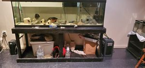 125 Gallon Fish Tank and Stand for Sale in Accokeek, MD