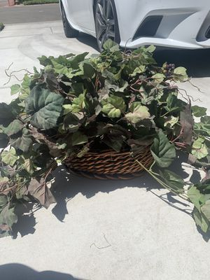 Fake plants for Sale in Reedley, CA