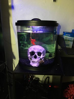 3.5 gallon fish tank DECOR NOT INCLUDED for Sale in Oceanside, CA