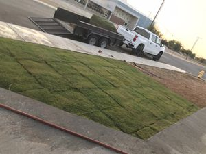 Sod/grass for Sale in Midland, TX