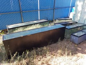 Fish or reptile aquariums for Sale in Payson, AZ