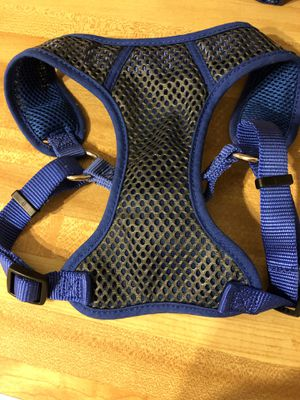Collar and dog harness for Sale in Coats, NC