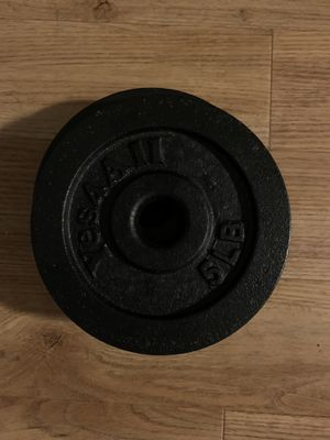 5lb. Cast iron standard weight plate for Sale in Pittsburgh, PA