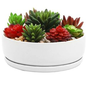 8 inch Modern White Ceramic Round Succulent Planter Pot with Removable Saucer for Sale in Bakersfield, CA