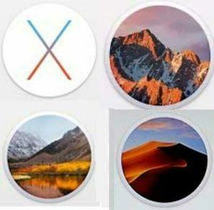 Mac OS X Recovery USB Installer, Yosemite El Capitan, Sierra, High Sierra, Lion, Mountain Lion for Sale in Lake Worth, FL
