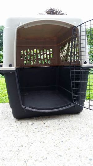 GRREAT CHOICE DOG CARRIER for Sale in Lowell, MA