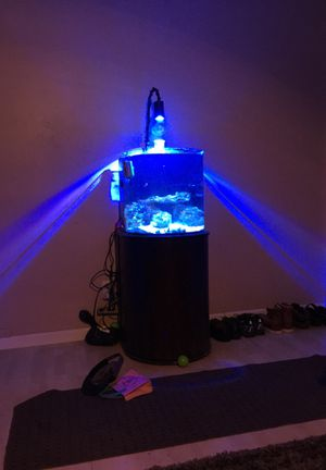 Saltwater reef tank for Sale in Tempe, AZ