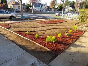 Landscape design for Sale in Los Angeles, CA