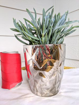 Blue Chalk Stick Succulent Plants in Silver Ceramic Planter Pot-Real Indoor House Plant for Sale in Auburn, WA