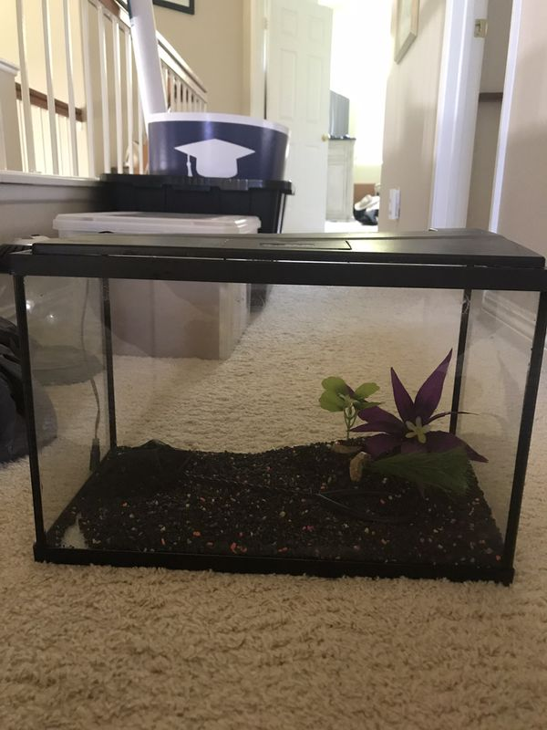 Fish tank with decorations, gravel, fish net, and filter