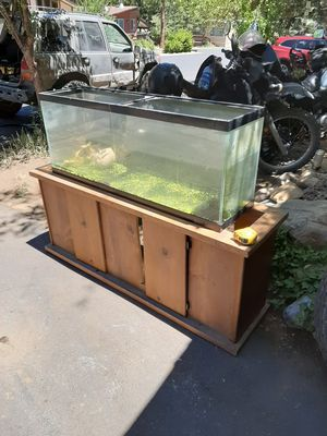 40 gallon fish tank and stand for Sale in Big Bear, CA