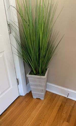 Artificial plant from homegoods $30 for Sale in Saugus, MA